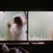 Woman on outside of window